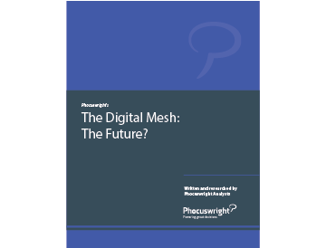 The Digital Mesh: The Future?