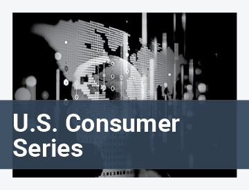 U.S. Consumer Travel Report Ninth Edition (Series)