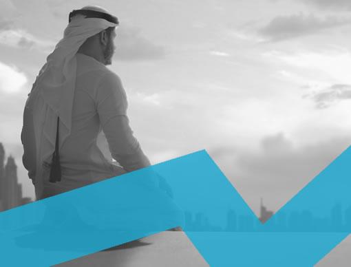Middle East Travel Market Data Sheet 2020-2024